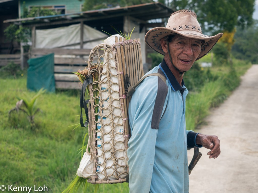 Traditional backpack